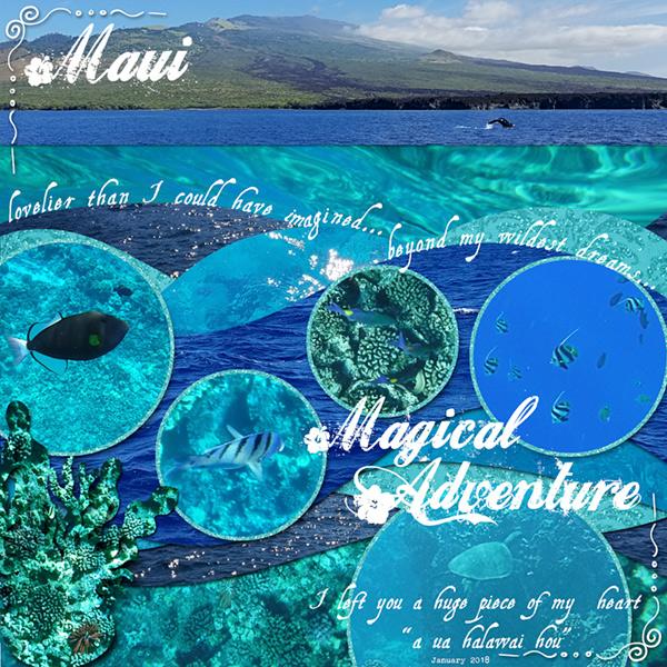 """Week 5-Three """"firsts""""-Hawaii, an ocean, & snorkeling"""