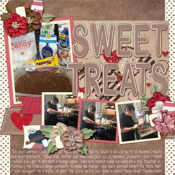 Vegan Fudge Sweet Treats